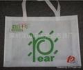 環保無紡布袋 2