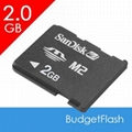 Sandisk or Sony Memory Stick M2 Card