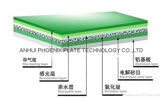 Positive  PS plates 1