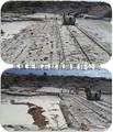 New white granite--Inner Mongolia white