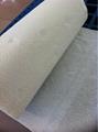 Hand Paper Towel 1