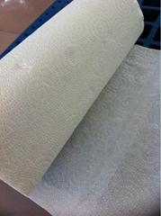 Hand Paper Towel