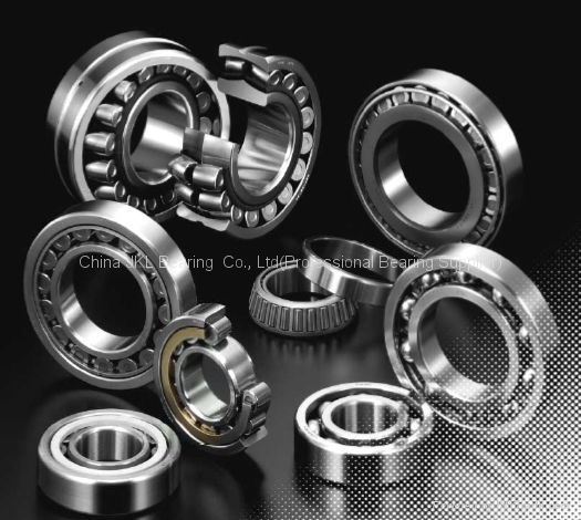 NSK BALL AND ROLLER BEARINGS