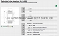 CYLINDRICAL ROLLER BEARINGS SL014920