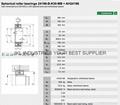 SPHERICAL ROLLER BEARINGS24196ECAK30W33