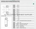 CYLINDRICAL ROLLER BEARINGSNU2248E-M1