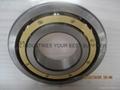 FAG  6330-M-C3   Deep Groove Ball Bearings
