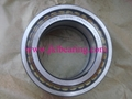 INA      SL045012 PP    Cylindrical Roller Bearing