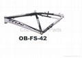 Bike Frame 2