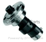 Camshaft (Hot Product - 1*)