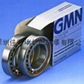 德國GMN高精密進口軸承S60