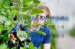 Wallroof農業岩棉/農業種植岩棉/無土栽培岩棉