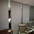 多用途大厅和会议室用隔音高隔墙 4