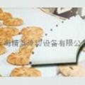 进口食品PU输送带 1
