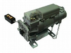Lie style 300kg motor