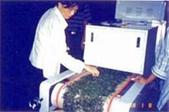 微波南瓜子干燥机