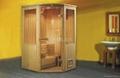 Sauna house steam room