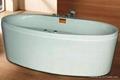 亞克力按摩浴缸 水療浴缸 泡泡