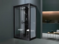Steam Room Shower Room (M-8285)