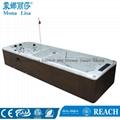Monalisa Luxury New Swimming Pool  M-3373 3