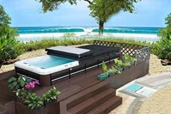 蒙娜丽莎8档无极变速家用超大型运动冲浪无边际户外游泳池SPA浴缸 (热门产品 - 1*)