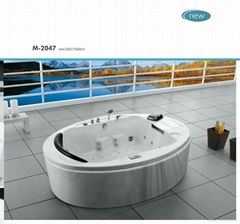 MASSAGE BATHTUB WITH TV DVD ICE BOX