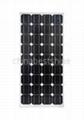 65Wp solar pane-module