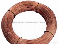 现货供应国产高品质QSn4-4-4磷青铜线材