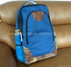 Pinic Bag