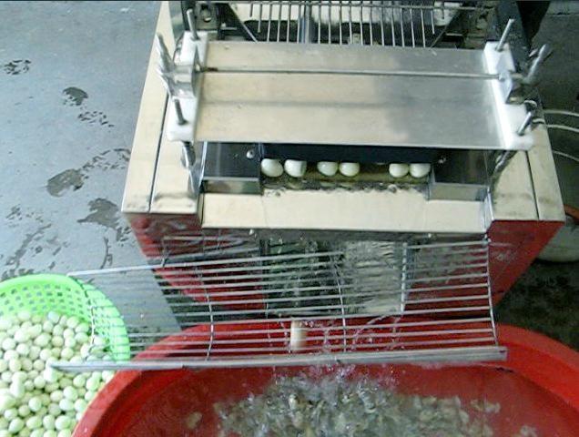 鵪鶉(鳥)蛋剝殼機組合 1