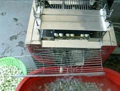 鵪鶉(鳥)蛋剝殼機組合
