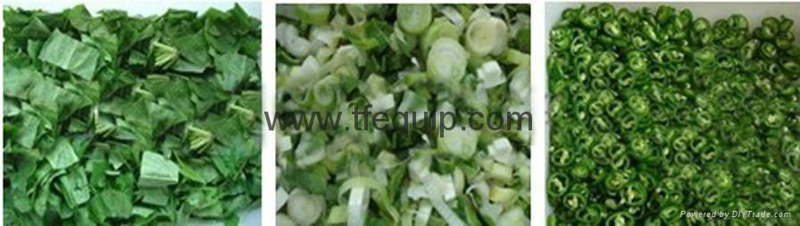葉莖類切菜機/切肉機 4