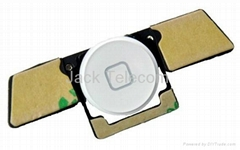 iPad 2 Plastic Home Button Flex Cable Assembly White