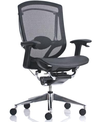 Mesh Manager Chair 1