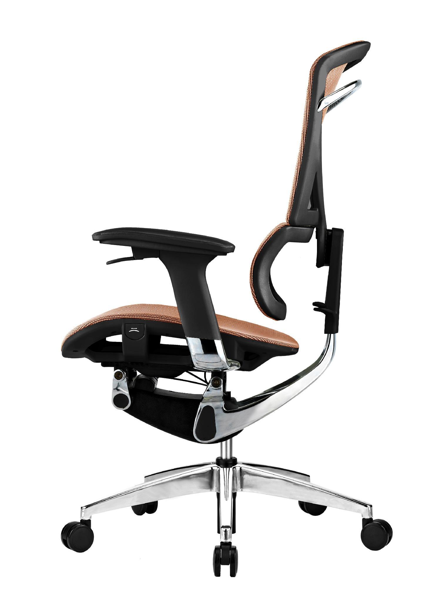Ergonomic office chair 1