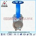 ANSI High Pressure Va  e 4