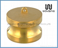 Brass Dust Cap