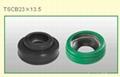 auto A/C compressor seal 1
