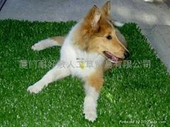 人造草坪 宠物草皮垫