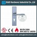 Stainless steel door handle with plate