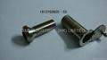 Zinc alloy door viewer 4