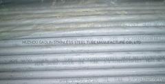 W. Nr 1.4362双相不锈钢管