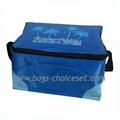70D nylon PVC Cooler Bag