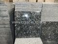 Blue Pearl GT Granite tile 2