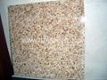 Granite Tile 60x30cm 60x60cm 3
