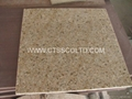 Yellow Granite tile