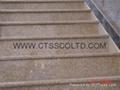 Granite Steps and floor