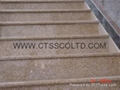 Granite Steps and floor
