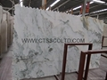 Colourful white marble slabs / tiles 4