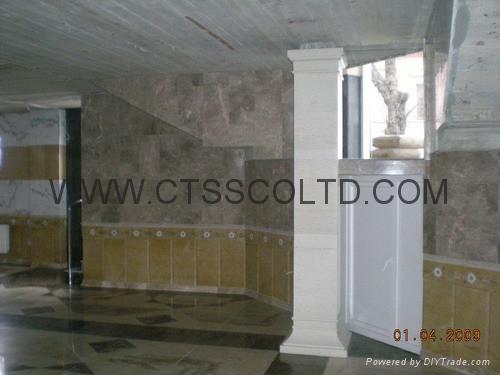 Medallion floor and handrails